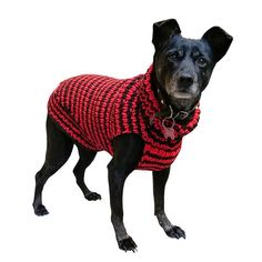 Dog Sweater - Hand Knit dog sweater for small and medium dogs - Custom made dog sweater for your dog Knit Dog Sweater, Dog Sweaters, Medium Dogs, Hand Knitting, Your Dog, Dog Cat, Pets, Handmade Gifts, Dog Stuff