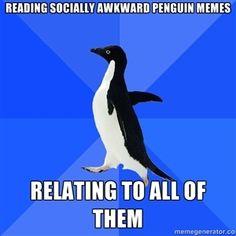 Socially Awkward Penguin...should probably stop looking at them...