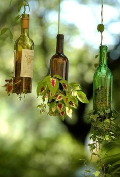 Recycling Wine Bottles into Hanging Planters plantas em garrafas Wine Bottle Planter, Wine Bottle Crafts, Bottle Art, Glass Planter, Diy Bottle, Wine Craft, Wine Bottle Garden, Homemade Wine, Hanging Planters