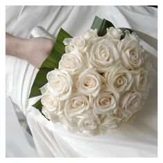 White rose, simply elegant with Ty leaves~