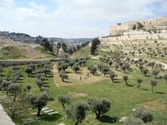 Kidron Valley in the Bible | kidron valley