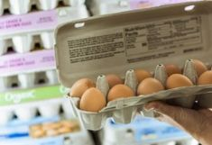 We asked the experts how long eggs last, how to store eggs properly, and how to tell if eggs are good or bad — so you can have fresh eggs for as long as possible. Freezing Your Eggs, Cracked Egg, Food Poisoning, Fridge Organization, Circulation Sanguine, High Cholesterol, Boiled Eggs, Cleaning Hacks, Nutrition