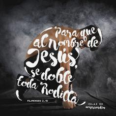Para que al nombre de Jesús, se doble toda rodilla… (Filipenses 2, 10)