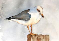 watercolor bird painting bird art original Seagull by bMoorearts