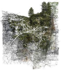 Bertrand Flachot - Drawing