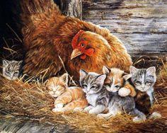 Kitten paintings. Shirley Deaville