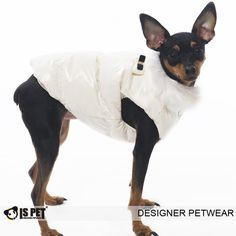 Best Friend World - IS Pet Fashion Cream Winter Body Warmer dog Coat, €40.00 (http://www.bestfriendsworld.ie/is-pet-fashion-cream-winter-body-warmer-dog-coat/)