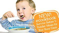 Toddler Meals E-Cookbook