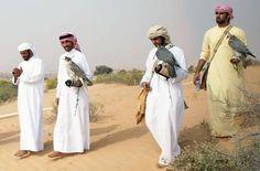 falconing in the desert - UAE