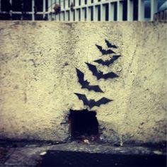 Bat Ralo