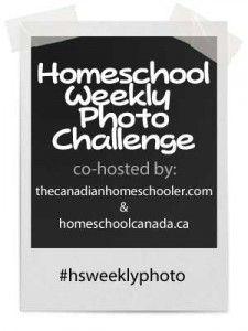Homeschool Weekly Photo Challenge | thecanadianhomeschooler.com