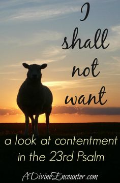 Powerful post exploring contentment through the lens of the 23rd Psalm. http://adivineencounter.com/i-shall-not-want