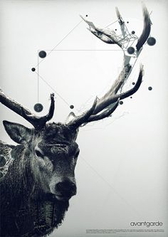 I love this poster, something about antlers, they get me every time