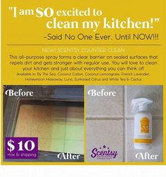 You need to try Scentsy counter clean