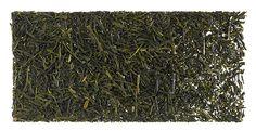 Japan Gyokuro How To Dry Basil, Herbs, Herb