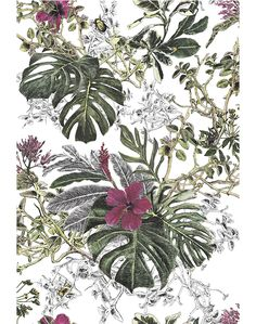 Seasons-Summer-Tropical-Bloom - wallpaper - interior - colour - floral - drawing