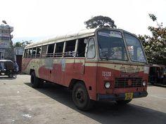 Tibetian Leyland
