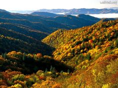 great smoky mountains national park images | Deep Creek Valley, Great Smoky Mountains National Park, Tennessee ...