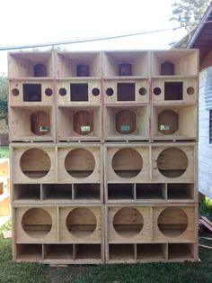 Custom Speaker Boxes, Speaker Box Design, 150cc Scooter, Hifi Audio, Reggae, Speakers, Bass, Instruments, Projects
