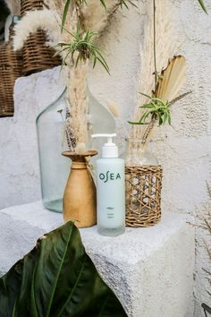 Our silky body lotion absorbs quickly to hydrate and nourish dry skin. Nutrient-rich seaweed delivers vitamins, minerals and amino acids. Shea Butter, Macadamia and Kukui oils increase the appearance of elasticity. Universally loved and endlessly adaptable. Kukui Oil, Flaky Skin, Avocado Oil, Amino Acids, Seaweed, Natural Healing, Body Lotion, Dry Skin, Shea Butter