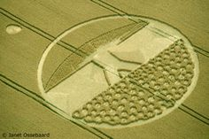 Crop circles - Graancirkels
