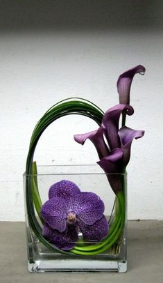 Great No Cost Calla Lily ikebana Popular Calla lilies include the essential vase flower. Arte Floral, Deco Floral, Arreglos Ikebana, Purple Calla Lilies, Lilies Flowers, Green Flowers, Purple Orchids, Exotic Flowers, Yellow Roses