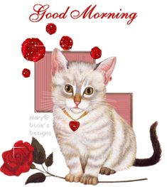 good morning cards for facebook | to your facebook friends send this to your facebook friends