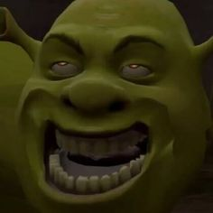 Weird Photos Of Shrek 7