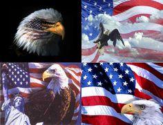 Lot Of 12 Patriotic Eagle Fabric Panel by CraftyDesignNBargain, $12.99