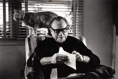 Charles Bukowski, uno de los escritores estadounidenses más populares del siglo XX. Sus libros de cuentos, novelas y poemas son conocidos internacionalmente por su particular visión de la realidad y por su lenguaje directo y original.