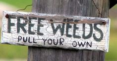 garden sign ideas (7)