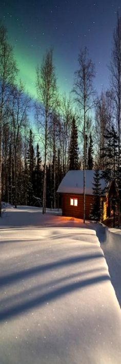 Winter - Log cabin in a boreal forest in Fairbanks, Alaska with green northern lights overhead. - by Patrick J. Endres