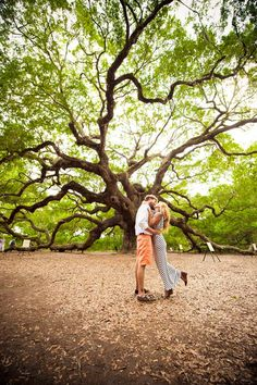 Downtown Charleston And Angel Oak Tree E Session Pictures Trees