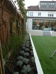 modern minimalist garden design low maintenance high impact garden design raised white wall beds grey decking east grass lawn turf sunken garden with fire and chimney flat trees balham wandsworth london (low maintenance landscaping around deck) Back Garden Design, Modern Garden Design, Backyard Garden Design, Backyard Landscaping, Back Gardens, Small Gardens, Outdoor Gardens, Indoor Outdoor, Minimalist Garden