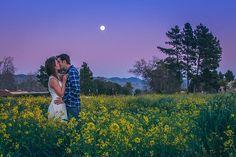 Twilight engagement session   Cory Williams - Wedding Artist