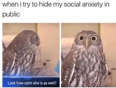 35 Memes That Anyone With Anxiety Will Relate To