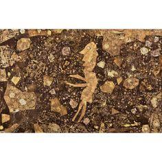 Jean Dubuffet: Bain de terre