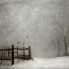 Urban Landscape Photography Tips – PhotoTakes Winter Landscape, Urban Landscape, Abstract Landscape, Landscape Paintings, Winter Painting, Winter Art, Fall Winter, Autumn, Landscape Photography Tips