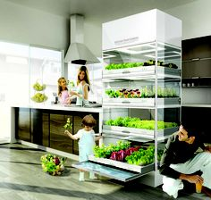 Kitchen of the future where you grow your garden in your own kitchen ~ The Kitchen Nano Garden is priced at $1000 -