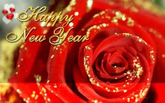Happy New Year's Card with a beautiful quote and a red flower. Description from imageslist.com. I searched for this on bing.com/images