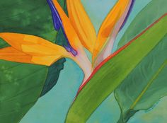 Bird of Paradise Flower Watercolor by Brina Beury