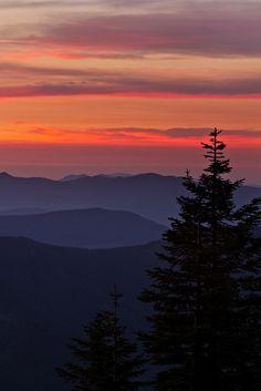 Mt. Rainier Sunset Show