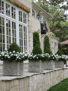 The French Tangerine: ~ pretty gray planters with white flowers.