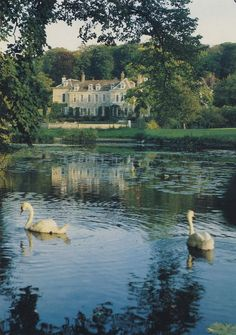 Firle Place, East Sussex, England. The house has been the seat of the Viscounts Gage for more than 500 years. An ancestor Sir Thomas Gage introduced to Britain the plum that bears his name the Greengage.