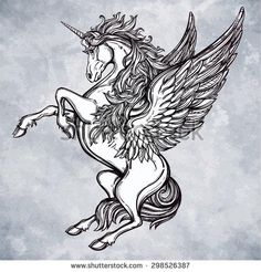 Hand drawn vintage Unicorn mythological magic winged horse Victorian motif, tattoo design element Heraldry and logo concept art Isolated vector illustration in line art style - Shutterstock