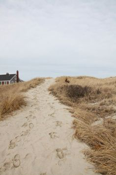 Natural sand dunes.