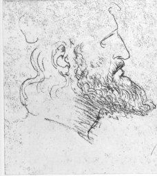 "Study of the Head of Cesare Borgia by Leonardo Da Vinci | Detail from ""Studies of the Head of Cesare Borgia from Three Points of View."" (all 3 are on one sheet - other heads are shown in another image) 11.1 x 28.5 cm. Red chalk. Turin, Royal Library c. 1502"