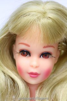 Mattel's Francie. 1970  So pretty...I still have her 2013