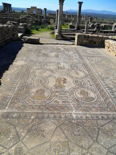 Volubilis. amazing mosaic floors - Morocco