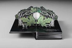 Up Book, Book Art, Paper Design, Book Design, Menu Design, Emilie Jolie, Rio Tamesis, Arte Pop Up, Pop Up Card